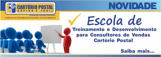 treinamento e desenvolvimento para consultores